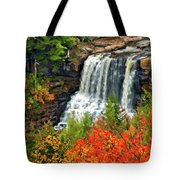 Fall Falls Tote Bag