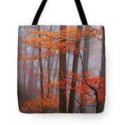 Fall Fog. Tote Bag
