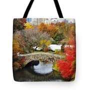 Fall Foliage In Central Park Tote Bag