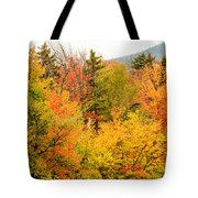 Fall Foliage In The Mountains Tote Bag