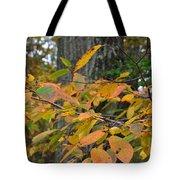 Fall Foliage Tote Bag