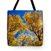 Fall Foliage Near Ruidoso Nm Tote Bag