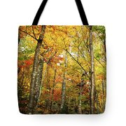 Fall Foliage On The Hike Up Mount Monadnock New Hampshire Tote Bag