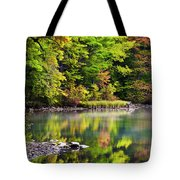 Fall Foliage Reflection Tote Bag