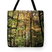 Fall Forest 2 Tote Bag