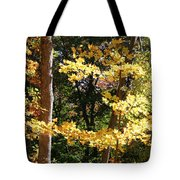 Fall Forest 3 Tote Bag