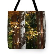 Fall Forest 4 Tote Bag