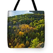 Fall Forest And Lake Top View Tote Bag