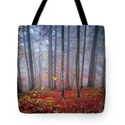 Fall Forest In Fog Tote Bag