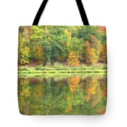 Fall Forest Reflection Tote Bag