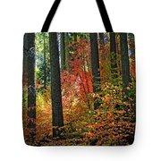 Fall Forest Splendor Tote Bag