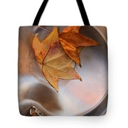 Fall Fountain Tote Bag