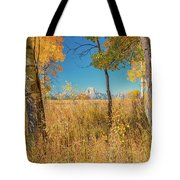 Fall From Oxbow Bend In Grand Tetons Tote Bag