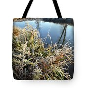 Fall Frost On Grasses Along Nippersink Creek Tote Bag