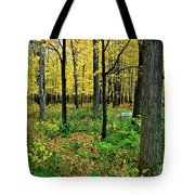 Fall Fusion Tote Bag
