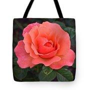 Fall Gardens Rosh Hashana Rose Tote Bag