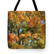 Fall Gradient Tote Bag