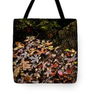 Fall In August Tote Bag