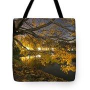 Fall In Dresden Tote Bag
