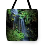 Fall In Eden Tote Bag by Carlos Caetano