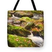Fall In Henniker Tote Bag