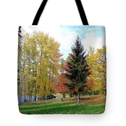 Fall In Kaloya Park 1 Tote Bag