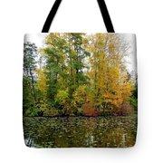 Fall In Kaloya Park 10 Tote Bag
