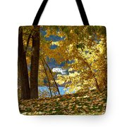 Fall In Kaloya Park 3 Tote Bag