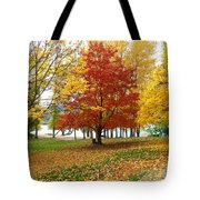 Fall In Kaloya Park 5 Tote Bag