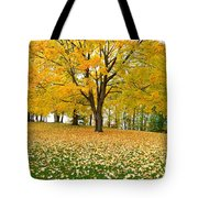 Fall In Kaloya Park 7 Tote Bag