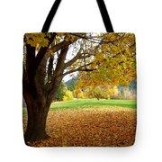 Fall In Kaloya Park 8 Tote Bag