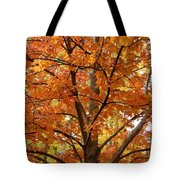 Fall In Kayloya Park 2 Tote Bag