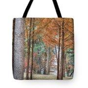 Fall In Korea Tote Bag