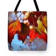 Fall In Maple Ridge Tote Bag
