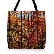 Fall In Ontario Canada Tote Bag