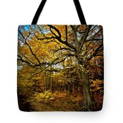 Fall In Pennsylvania Tote Bag