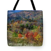 Fall In Tennessee Tote Bag