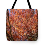 Fall In The Blue Ridge Mountains Tote Bag