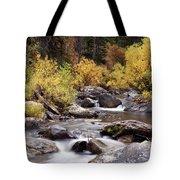 Fall In The Grand Tetons Tote Bag