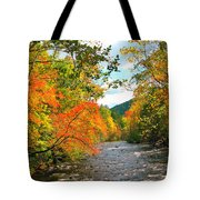 Fall In The Smokey Mountains  Tote Bag