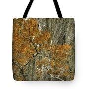 Fall In The Swamp Tote Bag