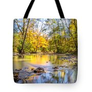 Fall In Wisconsin Tote Bag by Steven Santamour