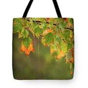 Fall-ing Rain Square Tote Bag