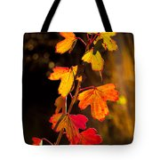 Imperfection Perfection Tote Bag