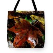 Fall Into Fall Tote Bag
