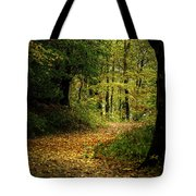 Fall Is Just Around The Corner Tote Bag