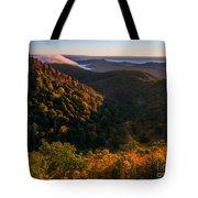 Fall. Tote Bag by Itai Minovitz