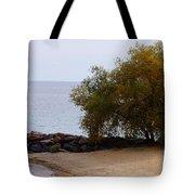 Fall Lake Tree Tote Bag