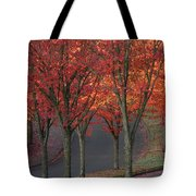 Fall Leaves Along A Curved Road Tote Bag