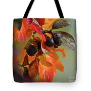 Fall Leaves And Berries Tote Bag